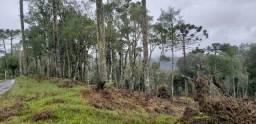 Sítio em Urubici/chácara em Urubici/área rural em Urubici