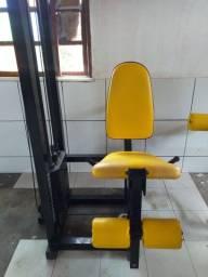 Cadeira Extensora Pro