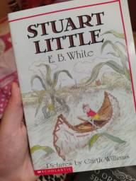 Livro em inglês Stuart Little