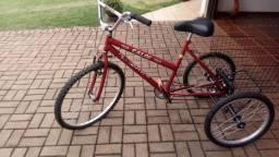 Bicicleta 3rodas adulto