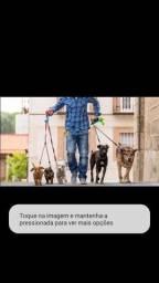 Esta sem tempo,para cuida de seu dog ?