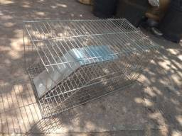Armadilha pra rato