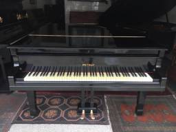 Pianos Modelos Caudas Excelentes Marcas CasaDePianos