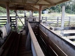 Fazenda em cacoal Rondônia