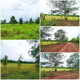 Vendo 50 hectares próximo de castanhal