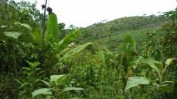 Fazenda 9 hectares em Gandu