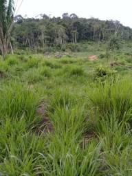 Fazenda 120 km de ariquemes com 200 hectares com 80 abertos