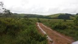 Fazenda para plantar muito 399 hectares