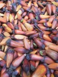 Pinhão e abacaxi