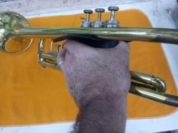 Capa proteção trompete