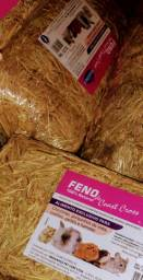 ALFAFA e FENO excelente para o seu roedor)
