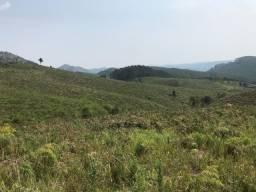 Área para Pecuária -Ótima topografia -Confira !!!