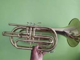 Trompete na mala