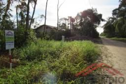 Lote parcelado, c/ 192m², rua aberta e com licença p/ corte da vegetação - Baln. Palmeiras