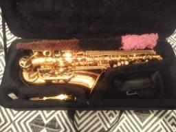 Saxofone shelter