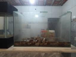 Lindos aquários