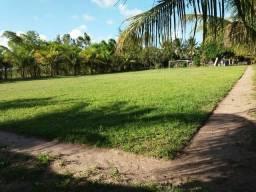Excelente chácara em Ceará Mirim com 10 hectares