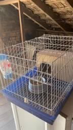 Gaiola para coelho com acessórios