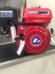 Motor Forth gasolina 6,5