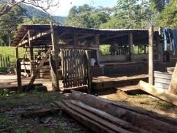 Fazenda 160 alqueires p gado
