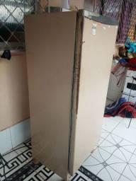 Vendo essa geladeira esta fucinando normal