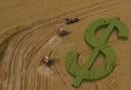 Título do anúncio: Crédito rural facilitado