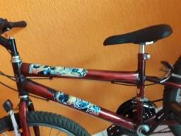 Bicicleta cidade mirandopolis