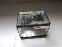 Terrário ou aquário