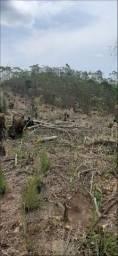 85- Terreno em Mairiporã