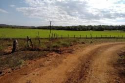 18 Km Lapa 27 Alqueires - 65 Hectares - Plantio 10 Alqueires