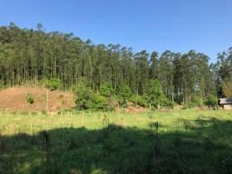 Sitio em Gramado, 15 hectares de barbada