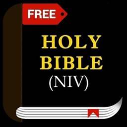 Bíblia grátis em inglês em áudio, versão NIV (para baixar)