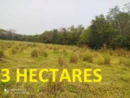 Oportunidade 3 Hectares em Campo Grande Saída pra São Paulo R$ 400 MIL