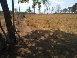 Fazenda 29 alqueires 20 km de Paraíso