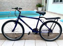 Bicicleta Fischer Ranner SX