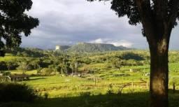 Fazenda à venda Mato Grosso, Pecuária, Região Rondonópolis, 1.054 ha - por R$ 10.500.000,0