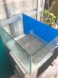 Terrário para tartaruga aquática e peixes