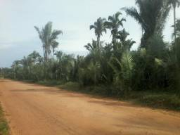 Terreno a 12km do Jardim Europa zona Sudeste de Teresina