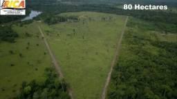 Fazenda com 80 hectares à 23 km de Porto Velho/RO á venda