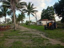 Vendo fazenda presidente tranquedo Neves