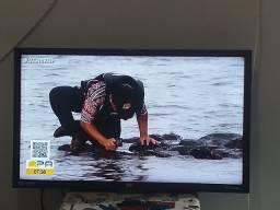 TV 32polegadas Semp Toshiba Led HD