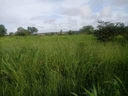 8271 | Fazenda à venda com 1 quartos em ZONA RURAL, CAMPO GRANDE