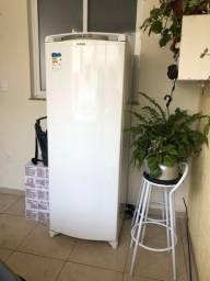 Freezer 246l 110v
