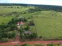 Excelente chácara a venda localizada no distrito de Jardinópolis/RO