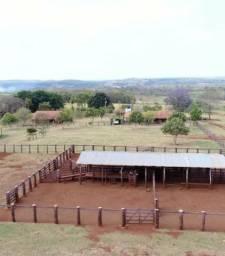 Sítio com 6 hectares
