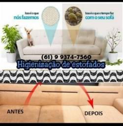Lava a seco sofá bancos de carro poltronas tapetes cadeiras puf cama
