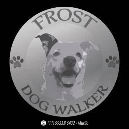 Passeador de cães (DogWalker)