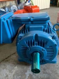 Motor elétrico WEG 100cv 6 polos W22