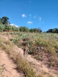 Ag1-plantão no local dos terrenos