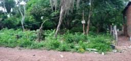 Título do anúncio: Terreno no Distrito da Guia